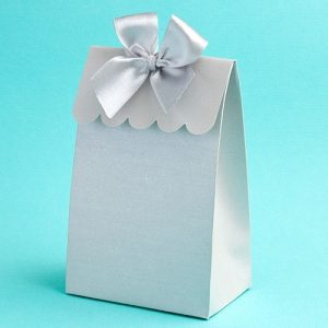 Silver Wedding Favour Box